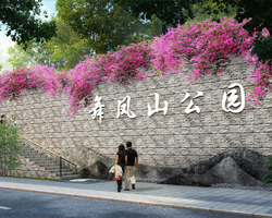 市政景观工程领域